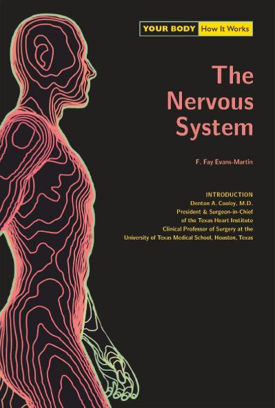 The Nervous System Your Body   How It Works