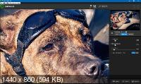 Topaz Photoshop Plugins Bundle 08.2019 + Portable