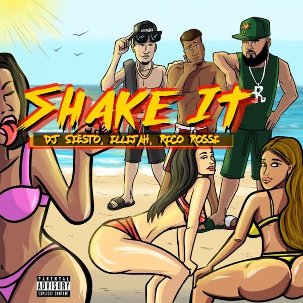 DJ Siesto Shake It SINGLE  2019