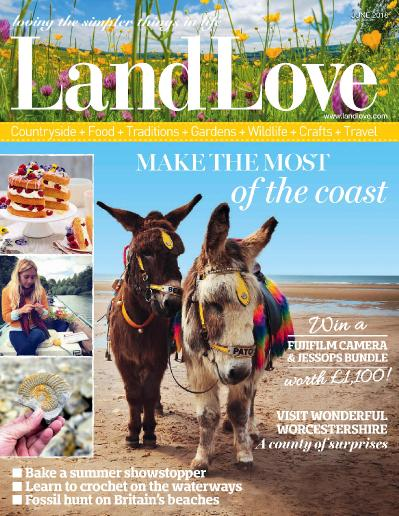 LandLove Magazine  June (2018)