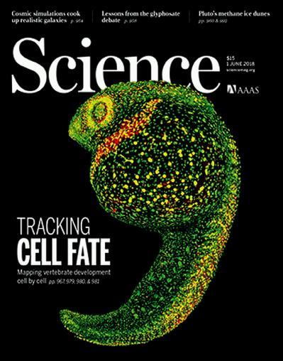 Science   1 June (2018)
