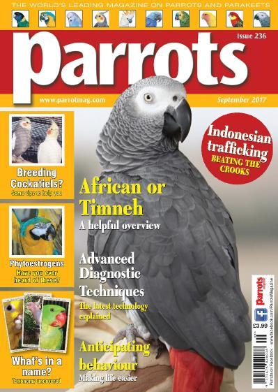 Parrots  Issue 236  September (2017)