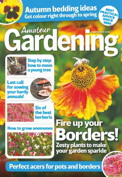 Amateur Gardening - 21 September (2019)