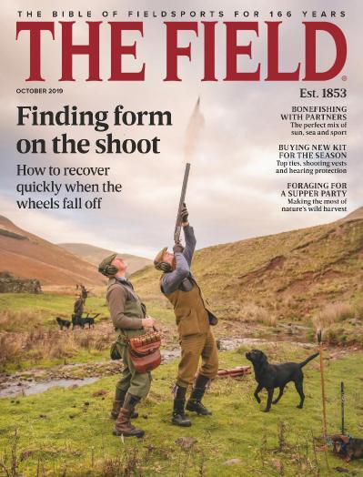 The Field - October (2019)