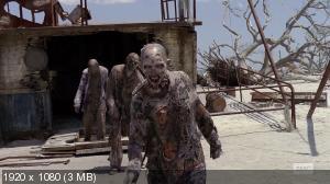 Ходячие мертвецы / The walking dead [Сезон: 10, Серии: 1-14 (16)] (2019) WEBRip 1080p | HamsterStudio